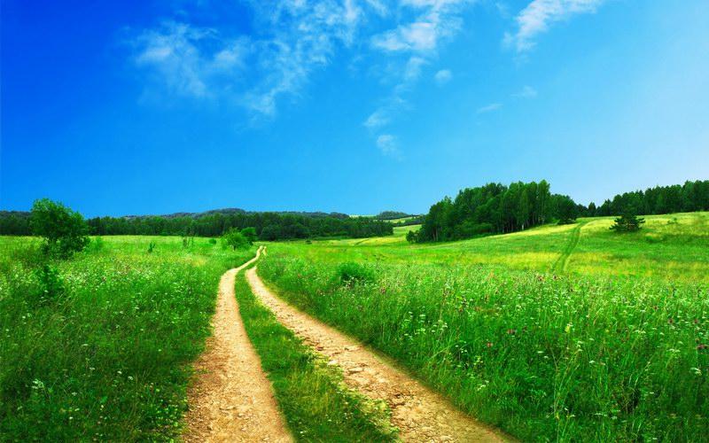 Wiosna i lato, zielona łąka.